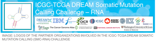 International team launches community competition to unravel how cancer changes a cell's RNA