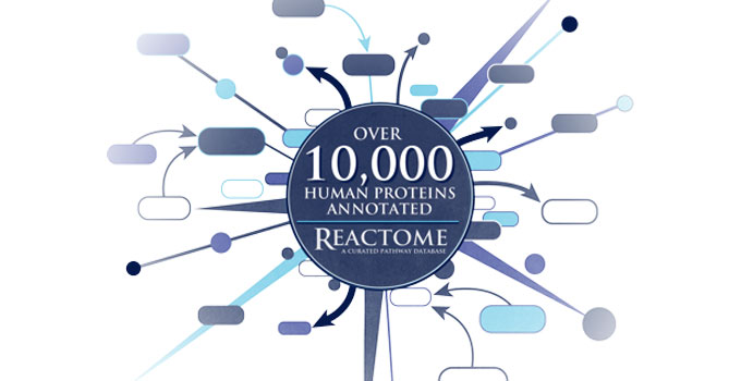 Reactome releases 10,000th annotated human protein, a major milestone that will benefit research community