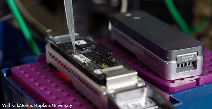 New Gene Sequencing Software Could Aid in Early Detection, Treatment of Cancer