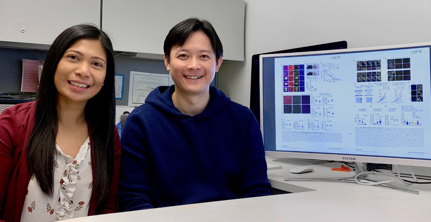 Study shows common cell protein could be targeted to treat childhood brain cancers