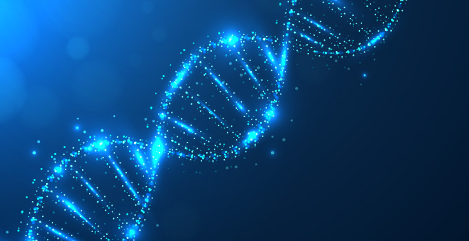 Teaming up to decode DNA damage repair