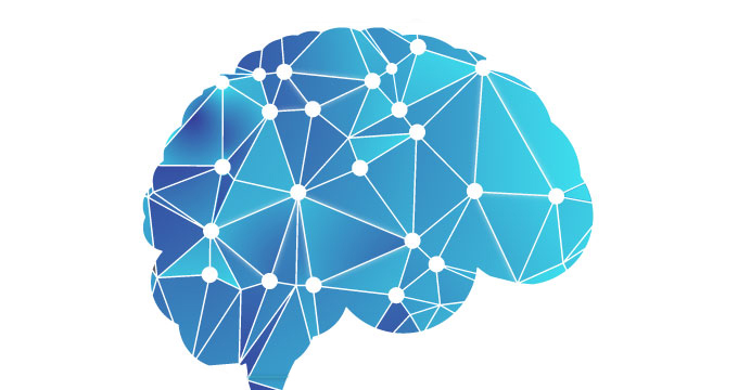 OICR-supported collaboration discovers new method to stunt the growth of brain cancers