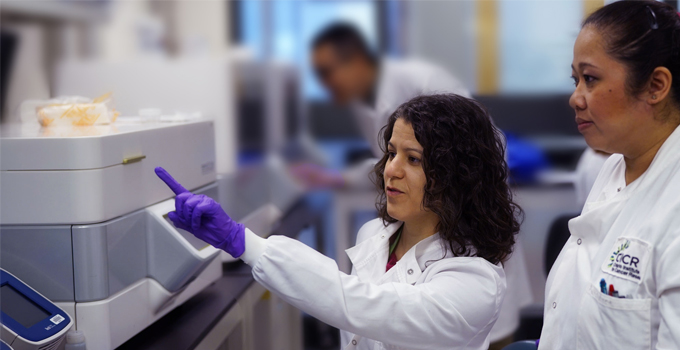 OICR research team awarded $2.4 million to facilitate precision medicine for early-stage breast cancer